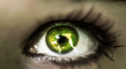 girl's green eye close up. Foto: Colourbox